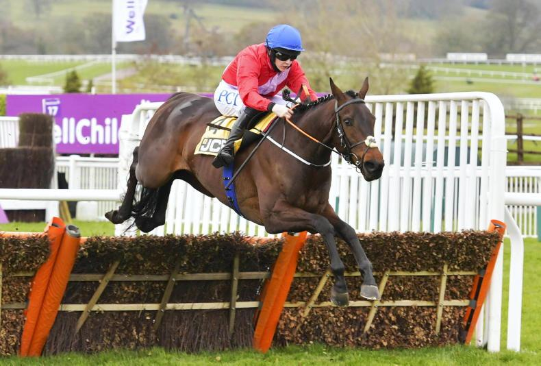 PUNCHESTOWN PREVIEW: Can Quilixios complete perfect season?