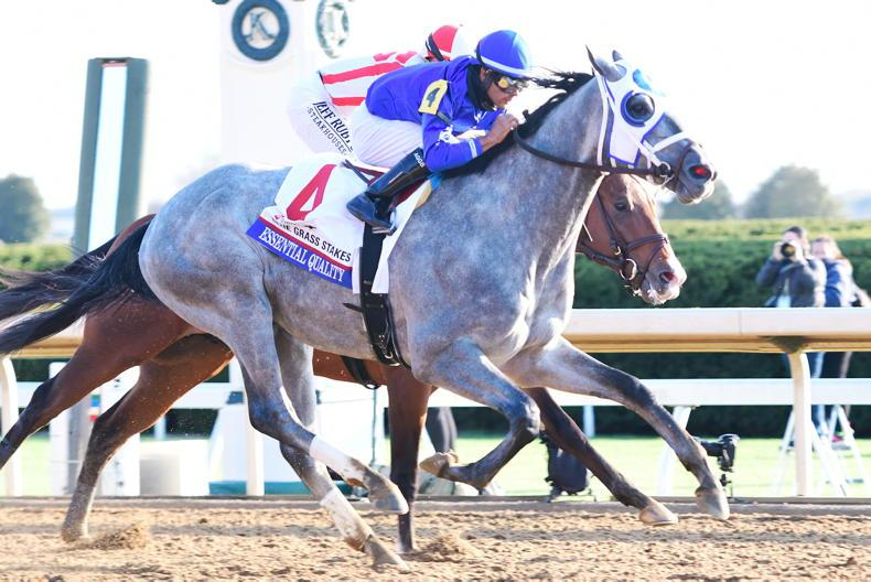 KENTUCKY DERBY PREVIEW: Twenty horses - down the stretch they come...