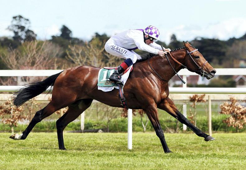 BRITISH PREVIEW:  Irish contenders hold strong hand in open Guineas