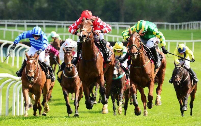 THE WEEK THAT WAS: Stewards inquires - heads or tails?