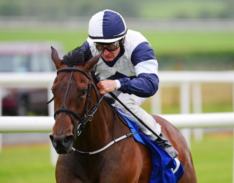 No Speak Alexander stakes Classic claims at the Curragh