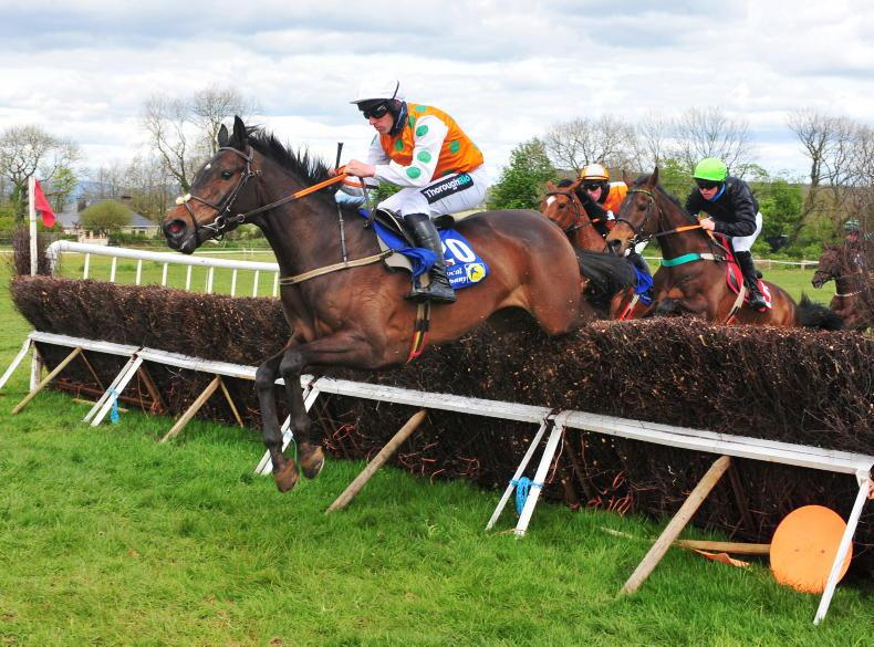 POINT-TO-POINTS: DROMAHANE: House Cross one to Watch