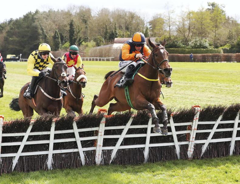 PUNCHESTOWN SATURDAY: Fast and furious Jeff jets in