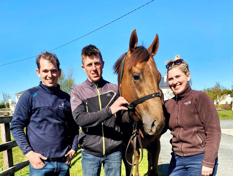 <h1>Irish Bloodstock News from The Irish Field</h1>