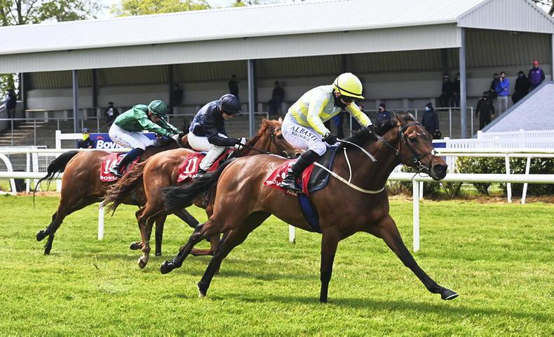 GOWRAN PARK TUESDAY: Holly Golightly makes all the running