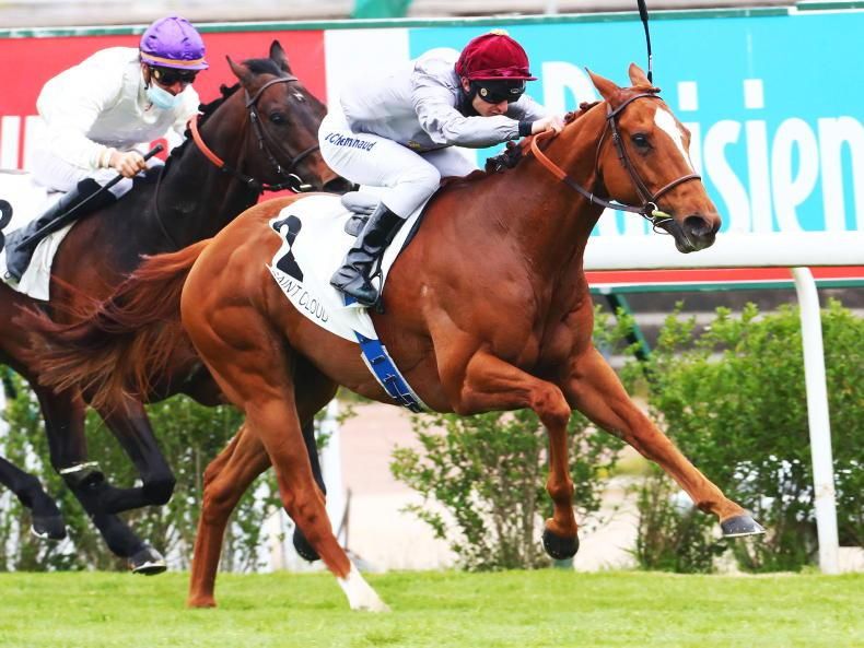 FRANCE: Ascot and Goodwood on the cards for Muguet winner Duhail