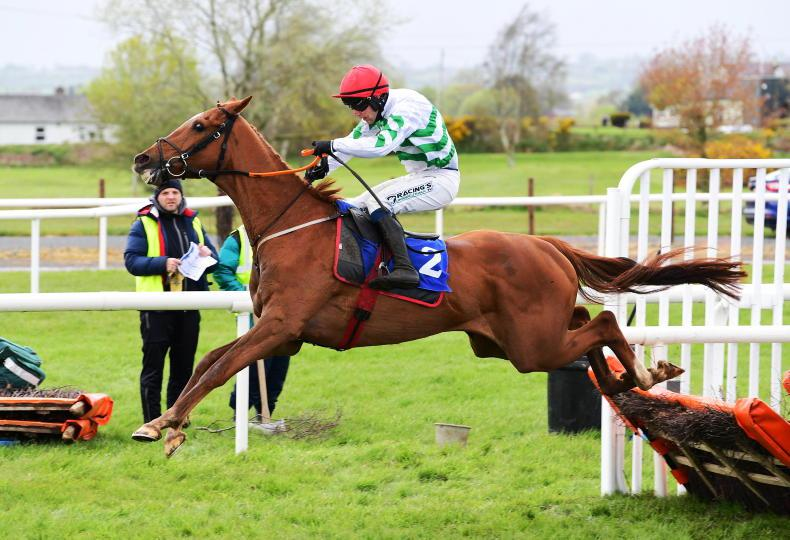 DOWN ROYAL MONDAY: Gainford combines with Foster for first treble