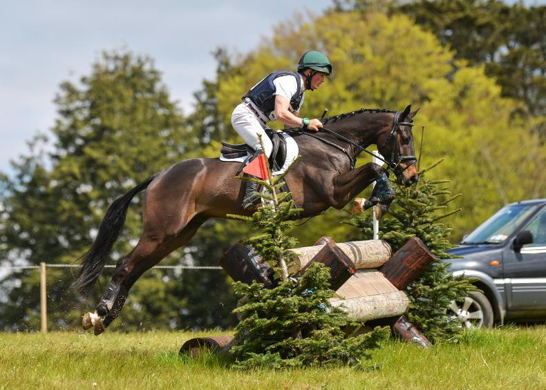 EVENTING: Double on the card for Whelan