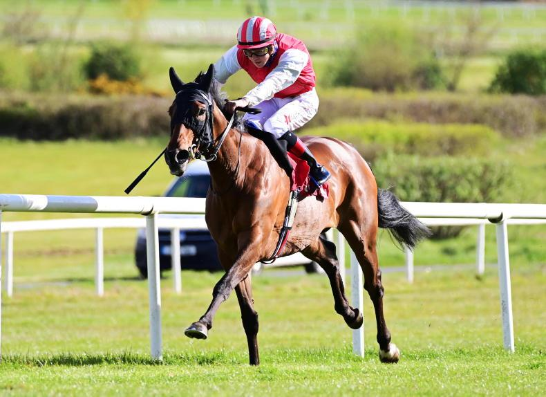 GOWRAN PARK WEDNESDAY: Mighty Blue in dominant form