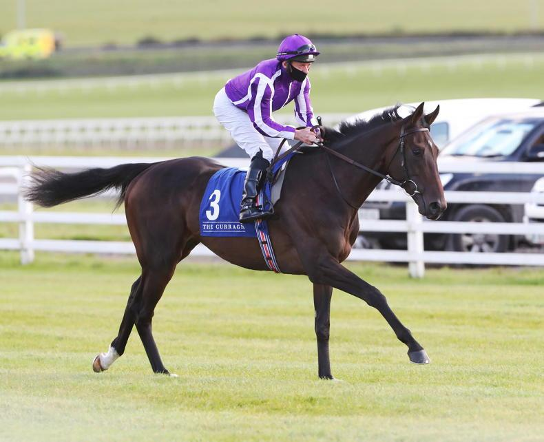 O'Brien monitoring High Definition with view to fitting in Derby trial