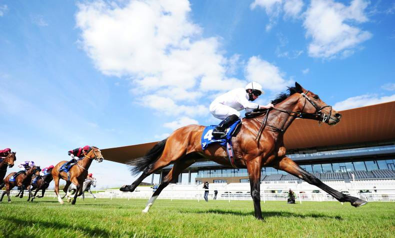 NEWS: Curragh has plan to fix grandstand 'whistle'