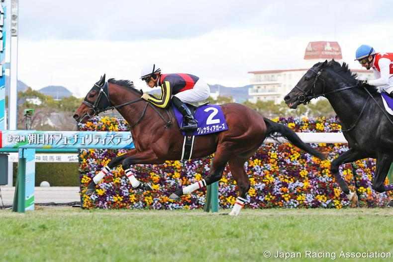 JAPAN PREVIEW: Grenadier another for Frankel