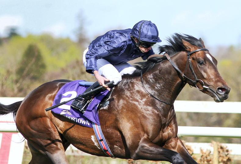 LEOPARDSTOWN SUNDAY: Bank on Ballet to make fitness count in Derrinstown