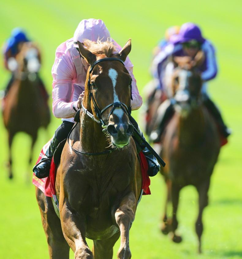 AMERICAN PREVIEW: Sovereign goes to War