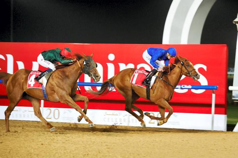 UAE: African Story revs up for the Dubai World Cup