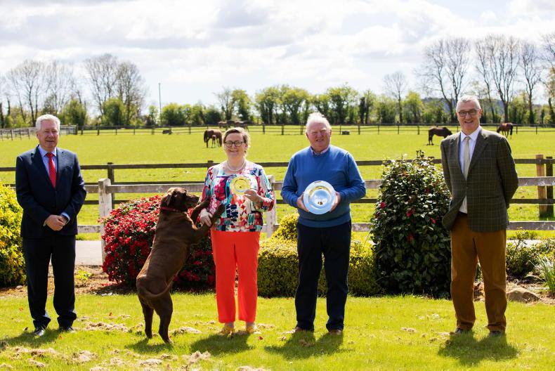 VIDEO: Jim Mernagh and Moyglare Stud named Breeders of the Year
