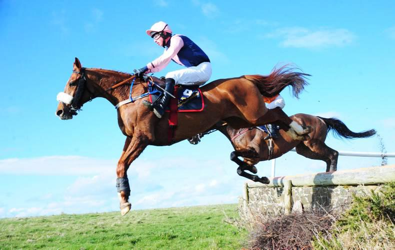 JOHN LLOYD ROGERS: Sunshine put a spring in our step at Lingstown