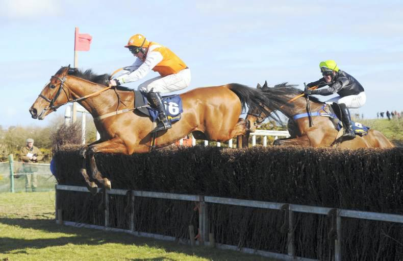No running for cover for colourful Codd