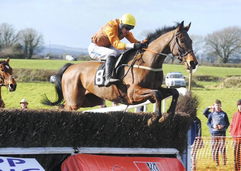 THE POINT: O'Connor doubles up on Hard To Call and Polymath