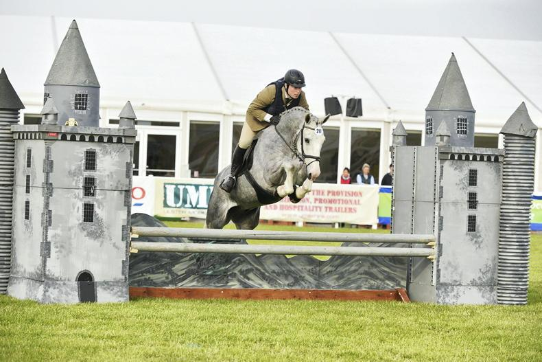 PONY TALES: Full steam ahead for Balmoral show