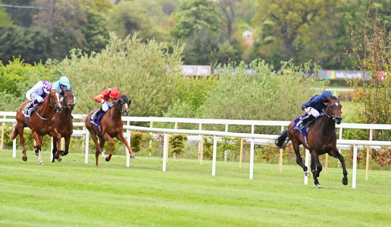 LEOPARDSTOWN SUNDAY: Ballet bolts into Derby favouritism