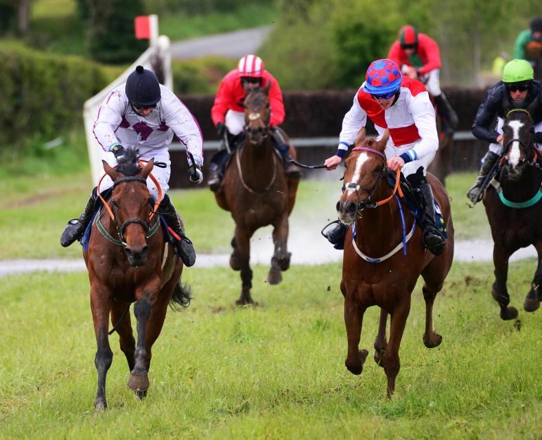 SALES: Point-to-point winners boost Doncaster catalogue