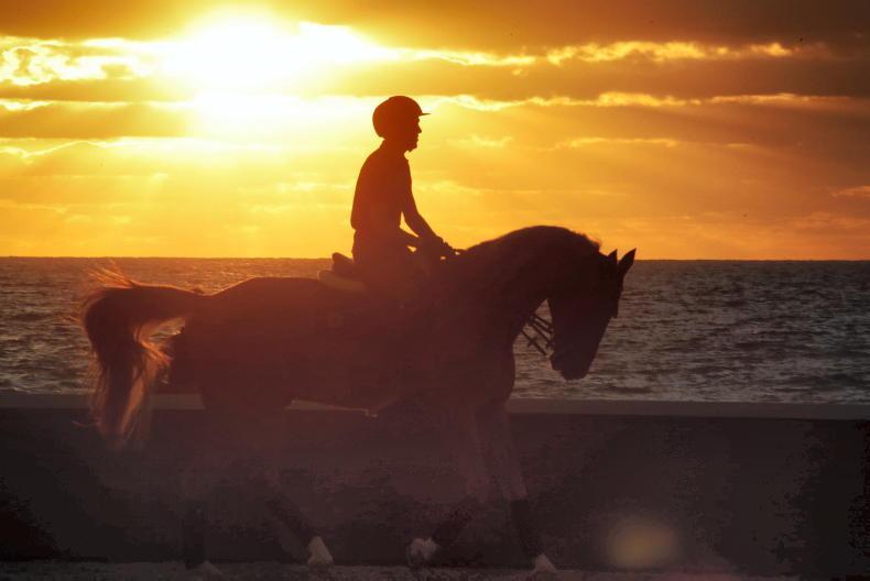 IRISH HORSE WORLD FIXTURES: May 15th 2021