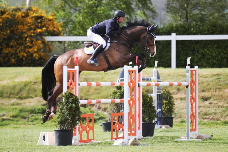 SHOW JUMPING: Gallagher and Flamenco in top form