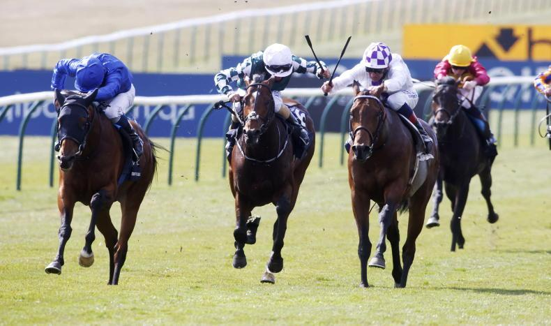 FRANCE: Bolger's colt has the Flare for the Poulains
