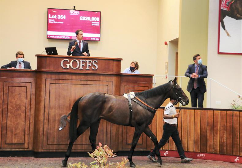 SALES: Arqana rendezvous at Doncaster