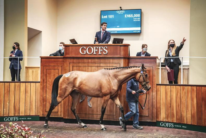 GOFFS UK SPRING STORE SALE: Buoyant market leads to record outcome
