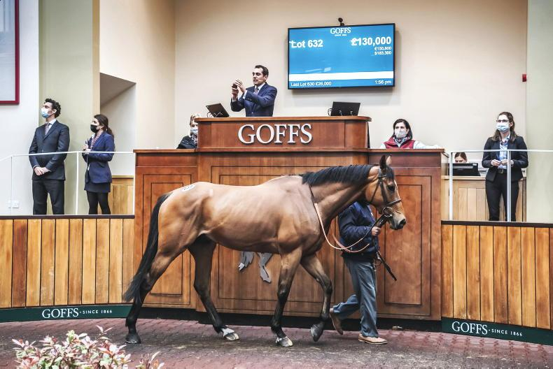 SALES: Channon chasers in demand at Goffs UK