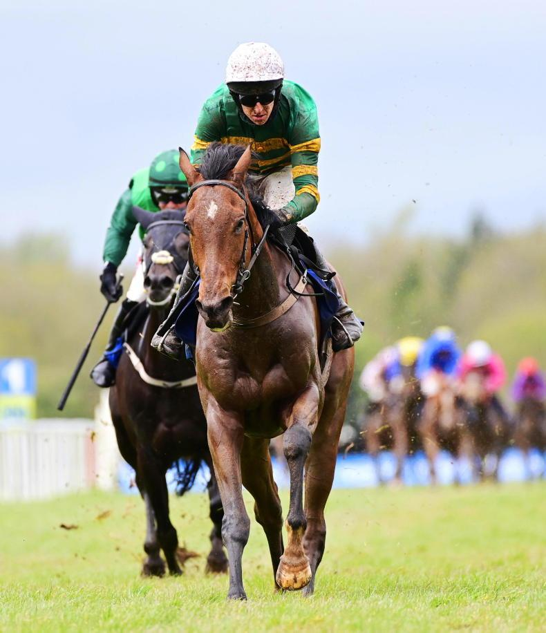 TIPPERARY THURSDAY: Slip Of The Tongue reveals promise