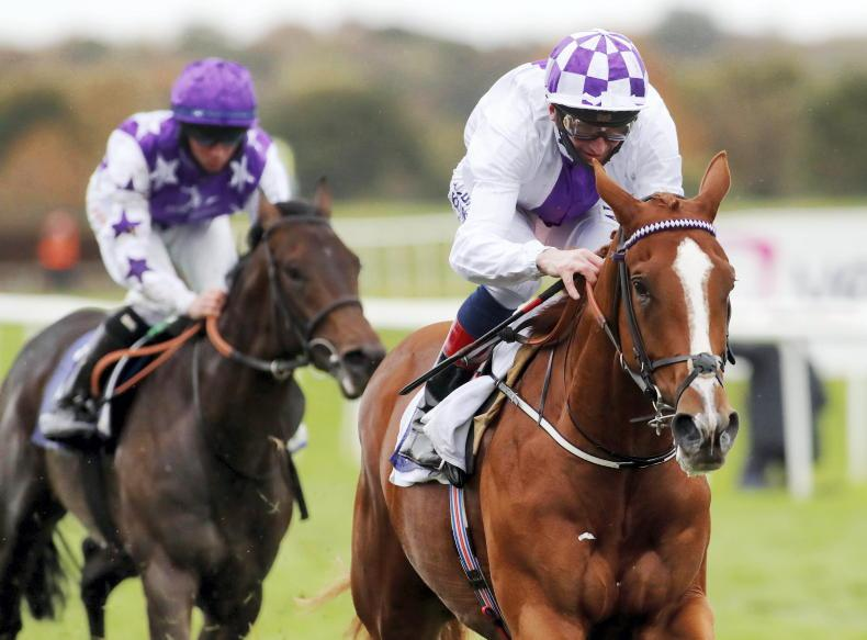 IRISH 2000 GUINEAS PREVIEW: Can Jim Bolger land another classic?