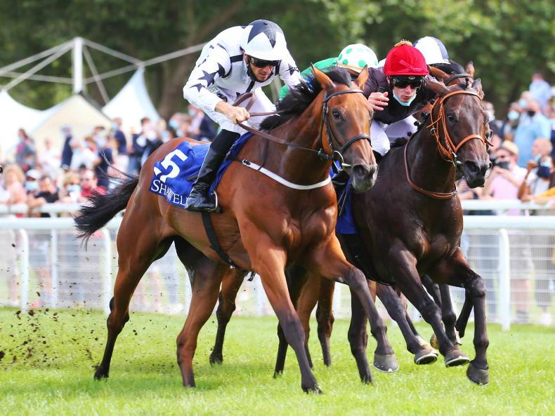 IRISH 1000 GUINEAS: Fillies' classic may be heading for export