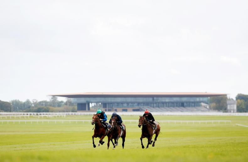 LADBROKES NAP TABLE: Selections for the Curragh