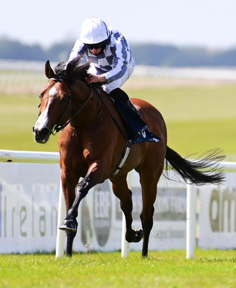 TATTERSALLS GOLD CUP: Which one from Ballydoyle will take the prize?