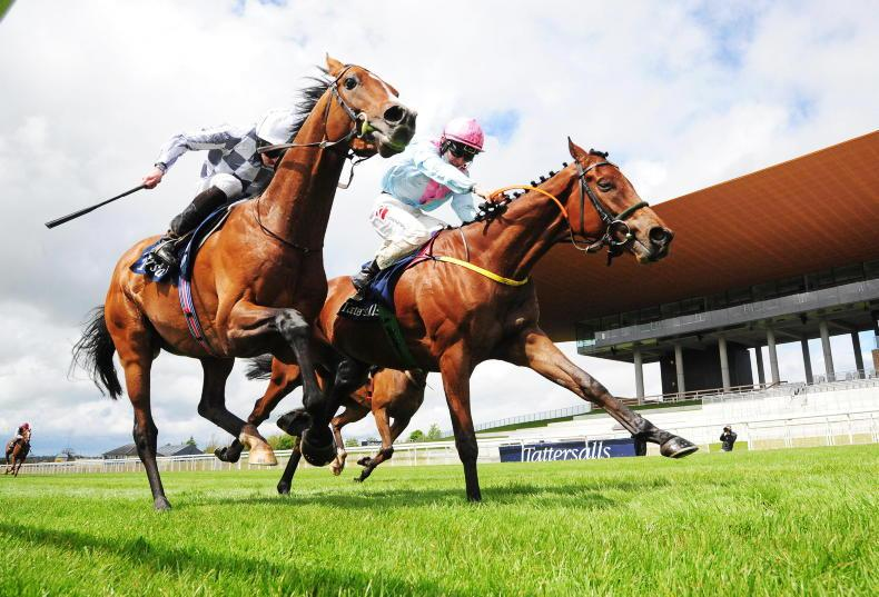 CURRAGH SUNDAY: Group 1 Dream for Meade as Helvic strikes Gold