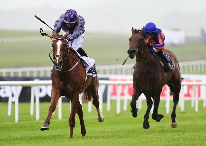 CURRAGH SATURDAY: Mac Swiney heads a Bolger Guineas one-two