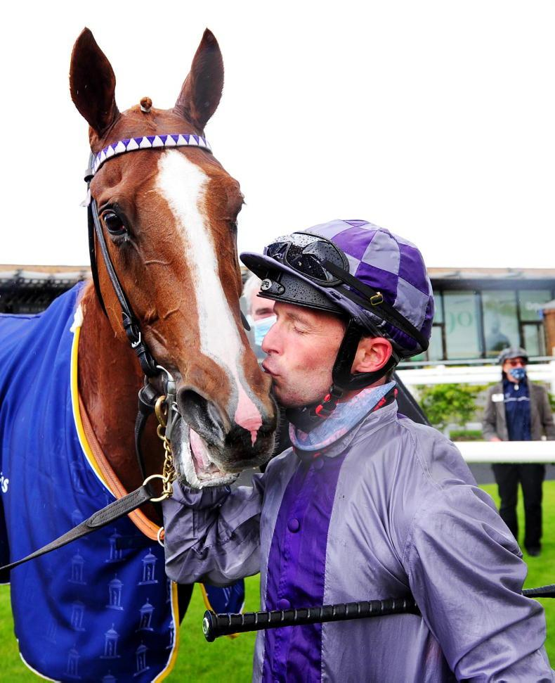 BREEDING INSIGHTS: Bolger's bandwagon rolls on and on