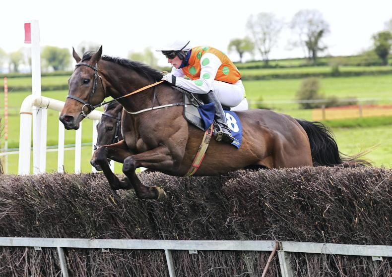 BALLINGARRY SATURDAY: Forward Plan forges clear to win