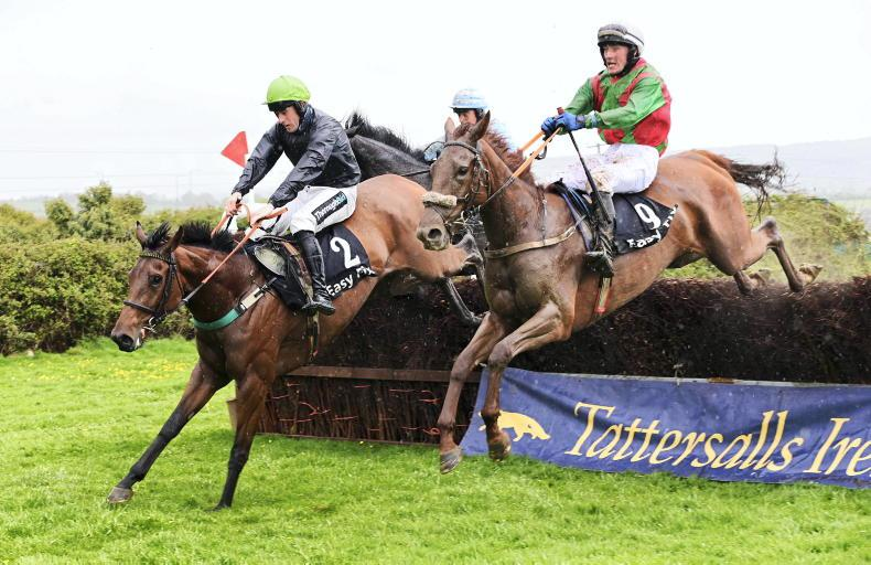 TRALEE SUNDAY: O'Neill and Bowe combine for sizzling four-timer