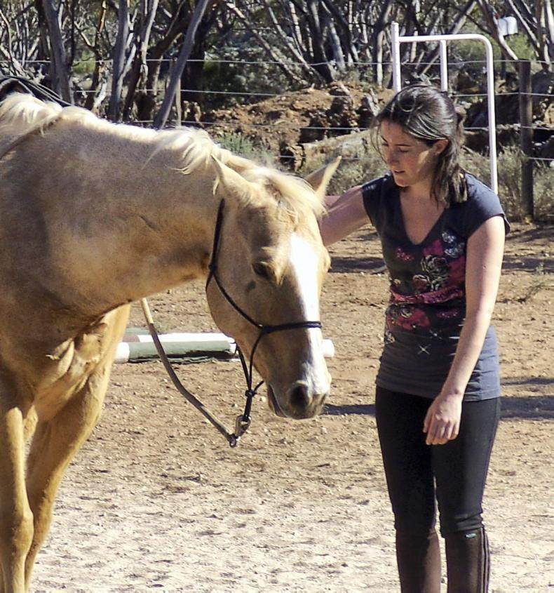 PONY TALES: Horse care trilogy off to flying start