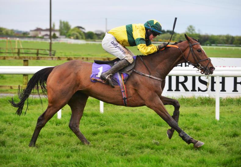 WEXFORD FRIDAY: Trixie completes cross-card double for Gibney
