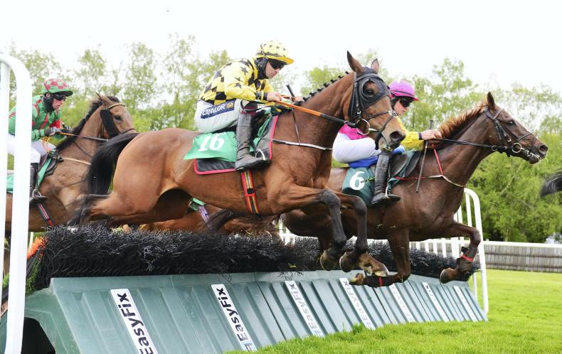 VIEW FROM ABOVE: Ringhill Lady delights Downpatrick syndicate