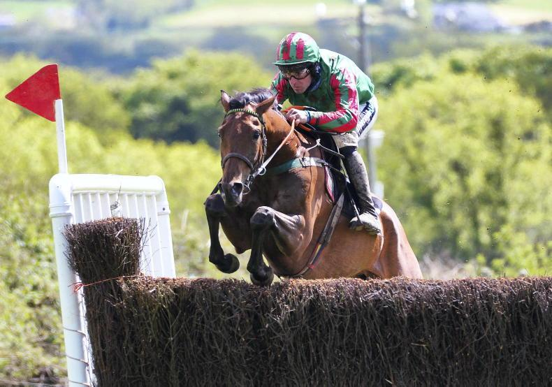 POINT-TO-POINT RATINGS: Givega's got talent