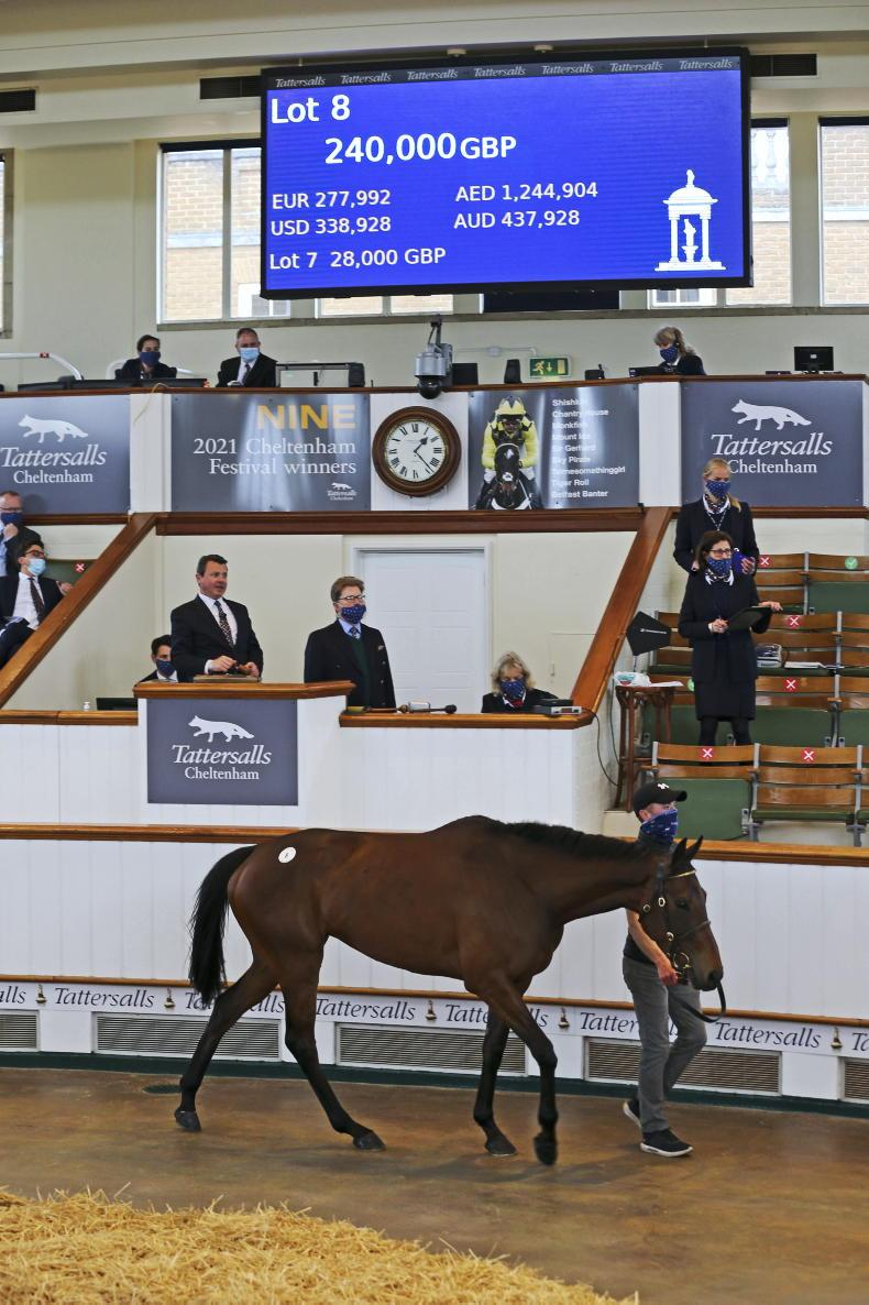 TATTERSALLS CHELTENHAM MAY SALE: Strong trade as point-to-point sales conclude