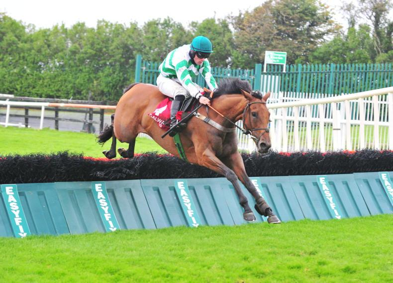 PUNCHESTOWN SATURDAY: Back Bridge to go in again for Murphy team