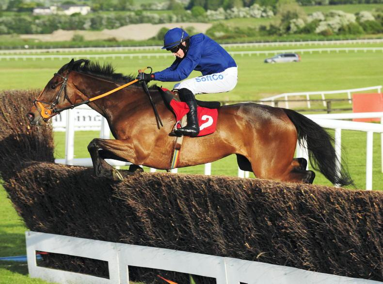 PUNCHESTOWN SUNDAY: Well handicapped West's can come alive at Punchestown