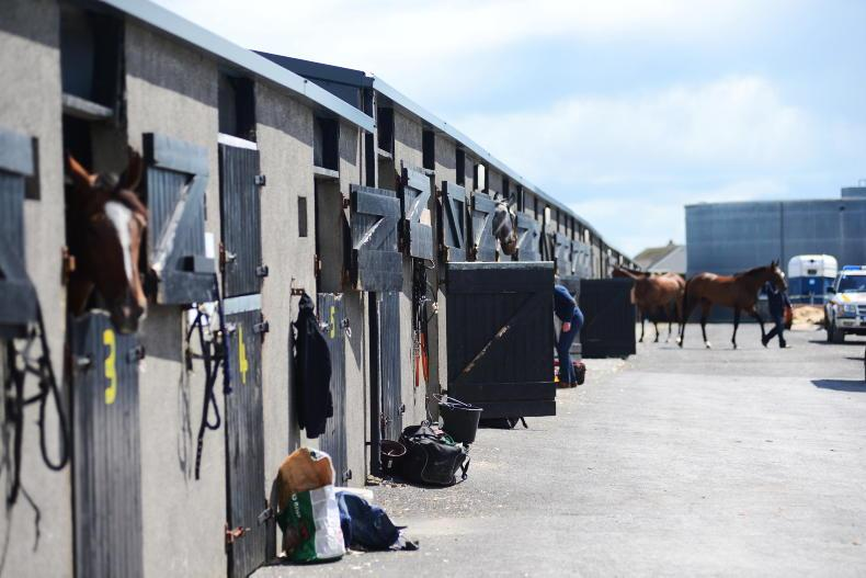 NEWS: IHRB gains access to all thoroughbreds at all times